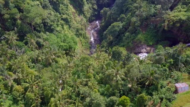 Sekumpul Fiji Waterfall Singaraja Bali Top Down Drone View