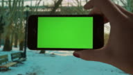 Selfie Green screen Chroma key Park sunset Female One Person