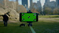 Selfie stick Smart phone green screen chroma key NYC