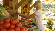 Sellers arranging tomatoes at farm stand