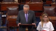 Senate Democratic Leader Chuck Schumer says that repealing the Affordable Health Care Act would be a Democrat disaster by taking away insurance and...