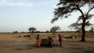Senegal, Podor, Djatar village, three women collecting water from a well