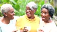 Senior African American woman conversing, drinking