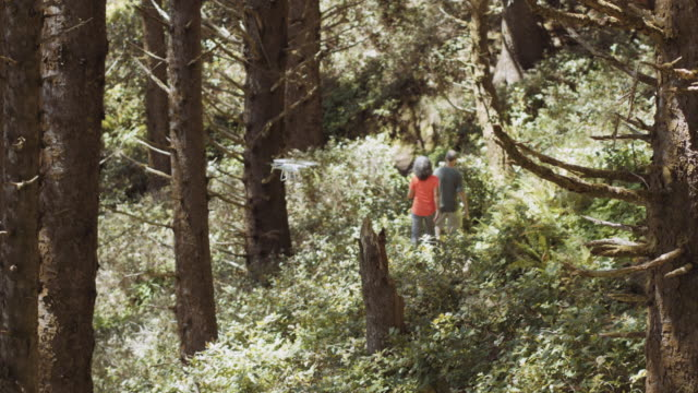 Senior aged couple hiking through an old growth forest