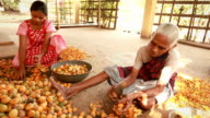 Senior and Young Indian Rural Women Peeling Betel Nut