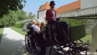 DS Senior couple and granddaughter riding in a carriage