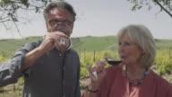 Senior couple drinking wine at vineyard