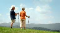 HD DOLLY: Senior Couple Enjoying The View