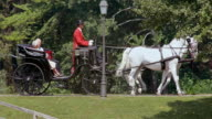 SLO MO DS Senior couple riding in a horse carriage