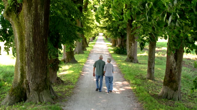 HD CRANE: Senior Couple Walking Down The Road