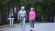 MS PAN ZO POV Senior couple walking for exercise in suburban neighborhood / Richmond, Virginia, United Sates