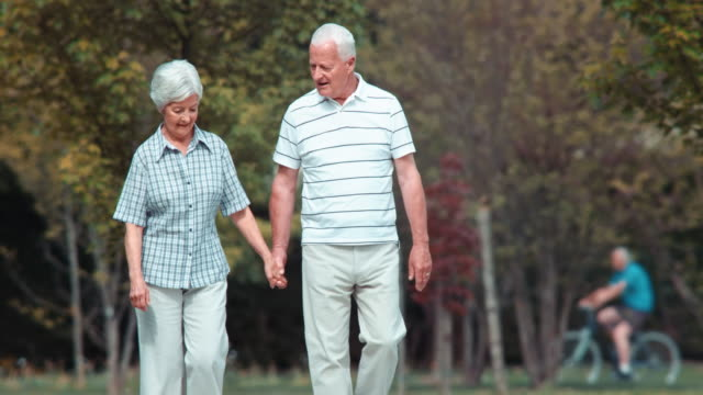 DS Senior couple walking in the park