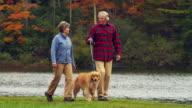 MS PAN TD TU Senior couple walking with Golden Retriever dog along lake, Manchester, Vermont, USA