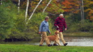 MS PAN Senior couple walking with Golden Retriever dog along lake, Manchester, Vermont, USA