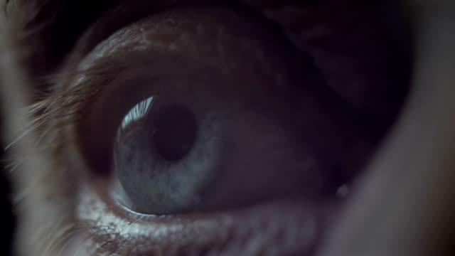 Senior macro di occhio