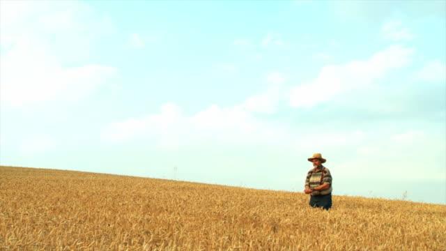 HD SLOW-MOTION: Senior Farmer In Wheat