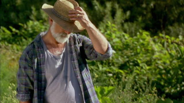 MS TU Senior farmer in wiping brow in vegetable garden, Halifax, Nova Scotia, Canada