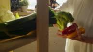 Senior lady buying fresh vegetables at farm store