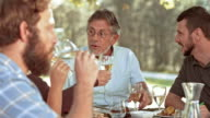SLO MO Senior man clinking glasses with his family at the picnic table