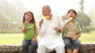 Senior man eating ice cream with his grandchildren in a park