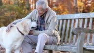 MS PAN Senior Man Petting Yellow Labrador Retriever While Sitting on Park Bench / Richmond, Virginia, United States