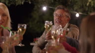 SLO MO Senior man proposing a toast at a picnic at night