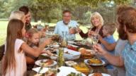 DS-Senior Mann schlägt einen Toast an Picknick-Tisch