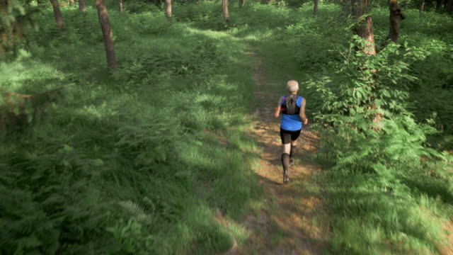 AERIAL Senior man running in the forest on a sunny day