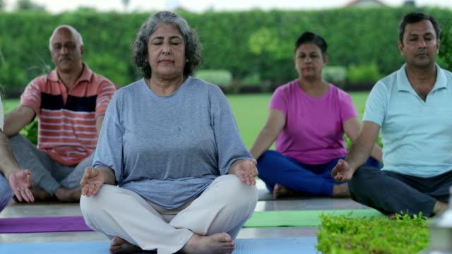 Senior men and senior women doing yoga in the park, Delhi, India