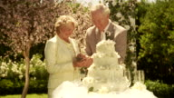 CU, Senior newly wed couple slicing wedding cake in garden