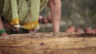 Senior woman putting onion into basket, Malshej Ghat, Maharashtra, India
