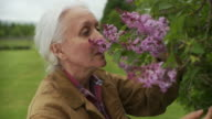 CU R/F Senior woman smelling flowers and smiling / Stowe, Vermont, USA