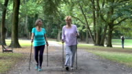 Senior women with hiking poles walking in park