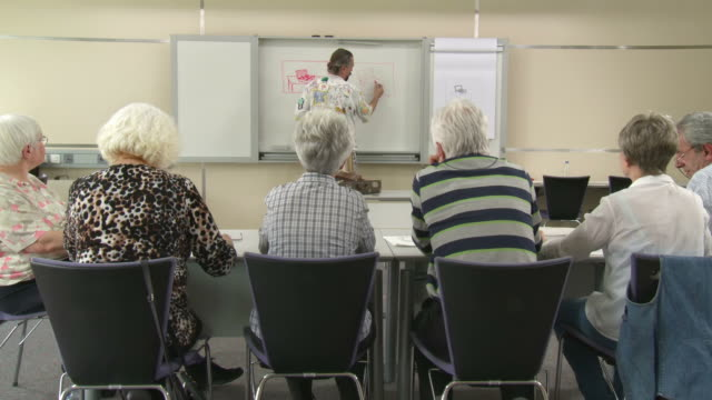 HD DOLLY: Seniors On The Painting Training Course