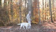 WS PAN Senrior Man Walking Yellow Labrador Retriever on Park Path / Richmond, Virginia, United States