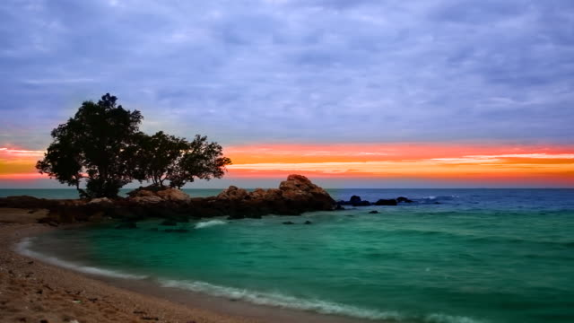 Senset sulla spiaggia tropicale