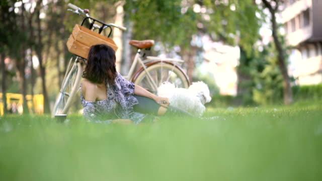 Sensual Girl On Picnic Accompanied By Maltese Dog