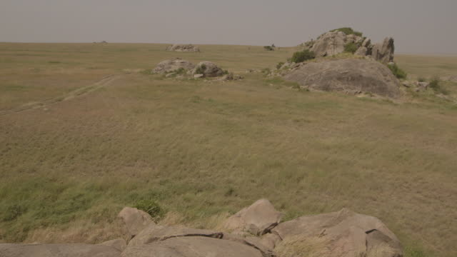 Sequence showing rocks protruding from vast Serengeti plains, Tanzania.