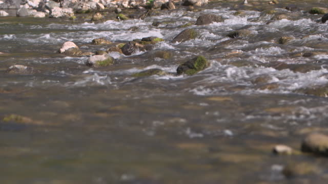 Sequence showing shallow, fast-flowing water trickle between rocks in a river in the UK.