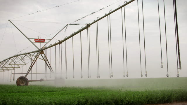 Sequence showing sprinklers watering crops on a farm in Sudan.