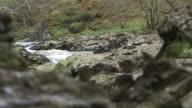 Sequence showing white water and rocky banks of the River Spean, Argyllshire, Scotland.