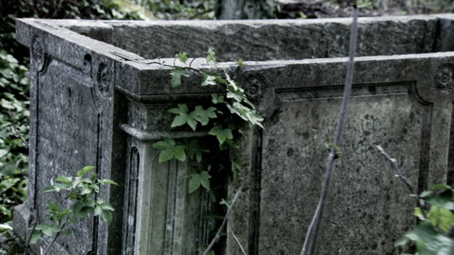 Sequence traveling through an overgrown graveyard.