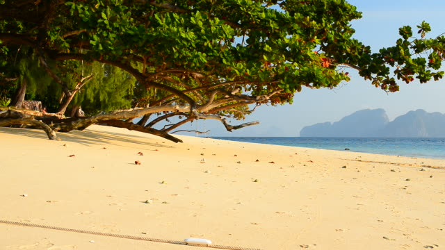 Serene Beach on Paradise Island