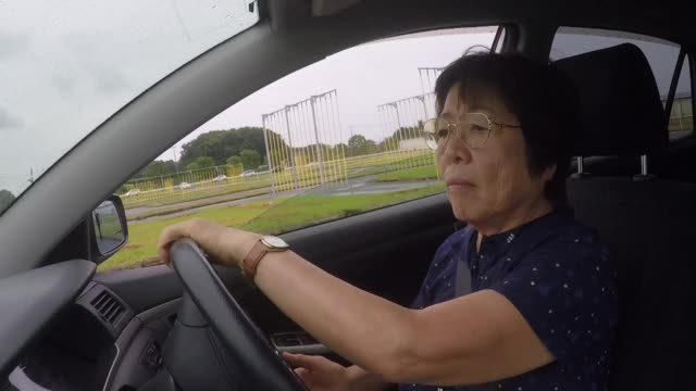 A series of fatal accidents caused by elderly drivers in Japan has left authorities desperately grappling for ways to clamp down on a problem that...