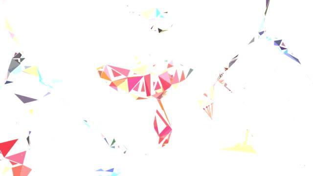 series transcendental fields : from body, bright (LOOP)