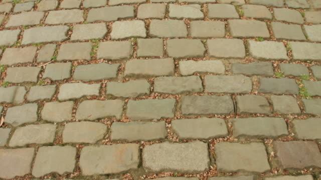 Sett cobblestone, or Belgian block, in Paris, France