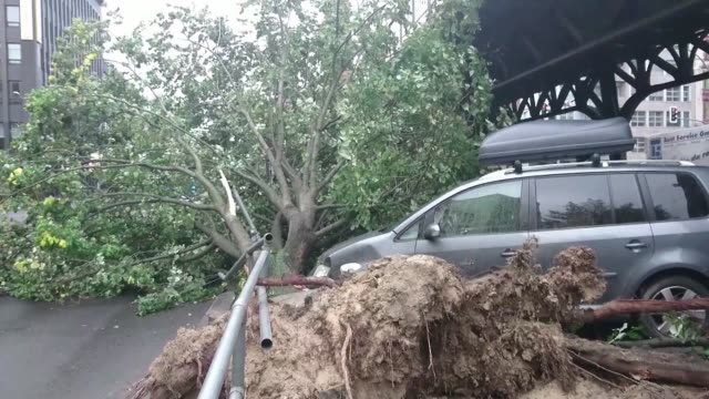 Several people have been killed in northern Germany as fierce winds toppled trees onto cars while the intense storm also forced the cancellation of...