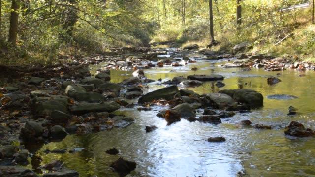 Shamona Creek, Shamona Park, Downington, PA