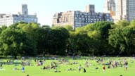 Sheep's Meadow summer in Central Park Manhattan New York City USA