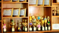 Shelves of trophies